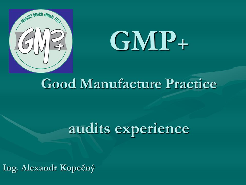 Good Manufacture Practice audits experience