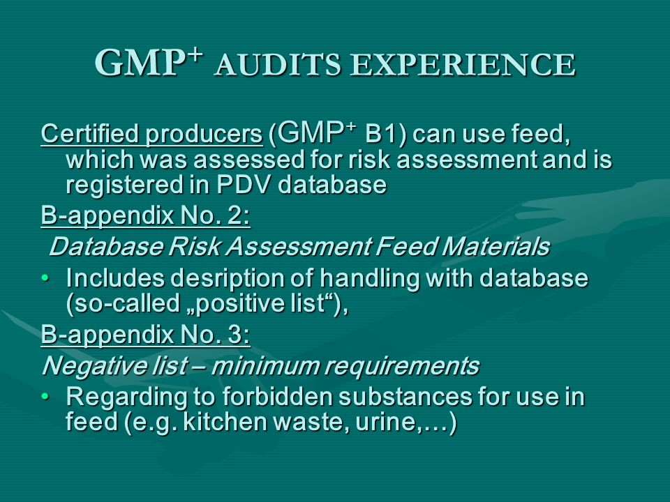 GMP+ AUDITS EXPERIENCE