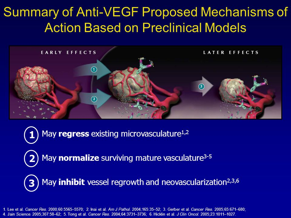 Summary of Anti-VEGF Proposed Mechanisms of Action Based on Preclinical Models