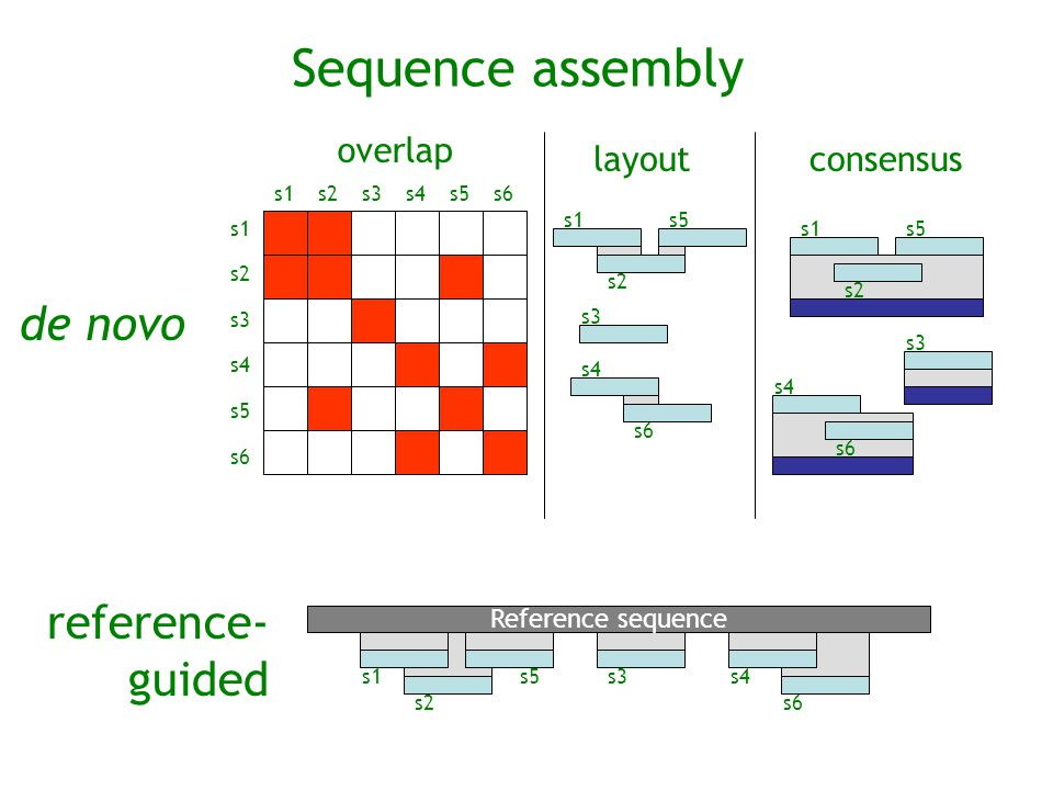 Sequence assembly de novo reference- guided overlap layout consensus