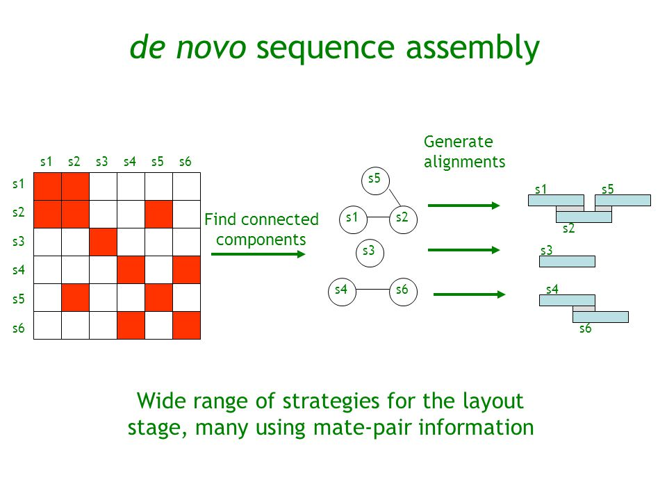 de novo sequence assembly