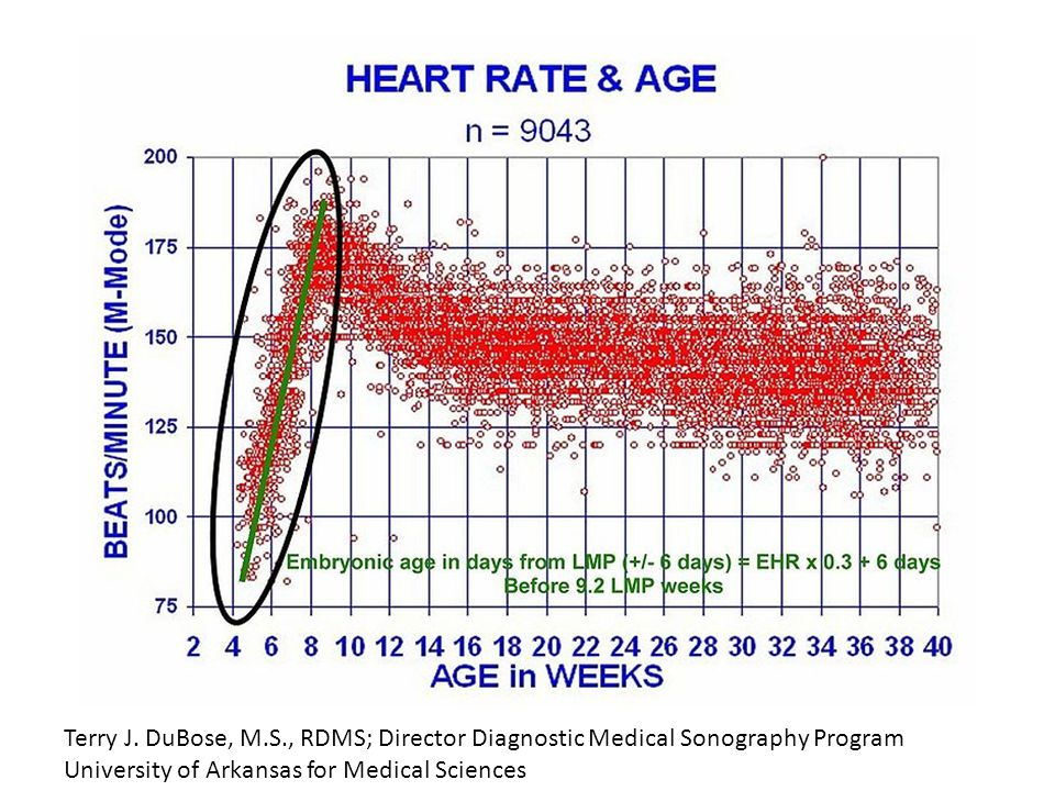 DuBose TJ, Cunyus JA, & Johnson L; Embryonic Heart Rate and Age
