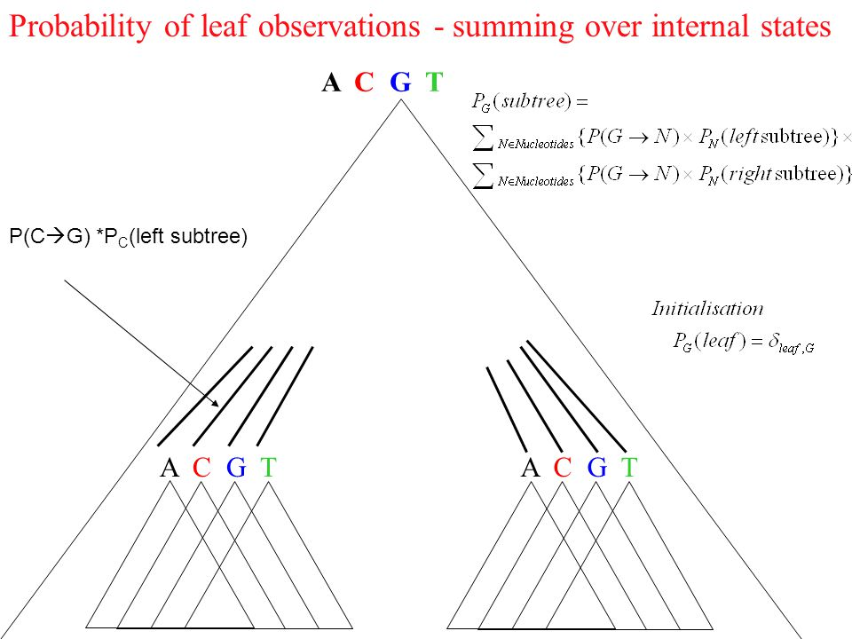 Probability of leaf observations - summing over internal states