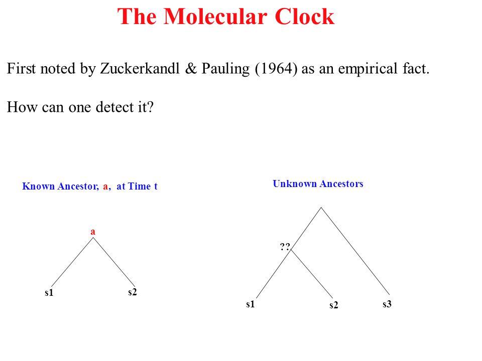 The Molecular Clock First noted by Zuckerkandl & Pauling (1964) as an empirical fact. How can one detect it