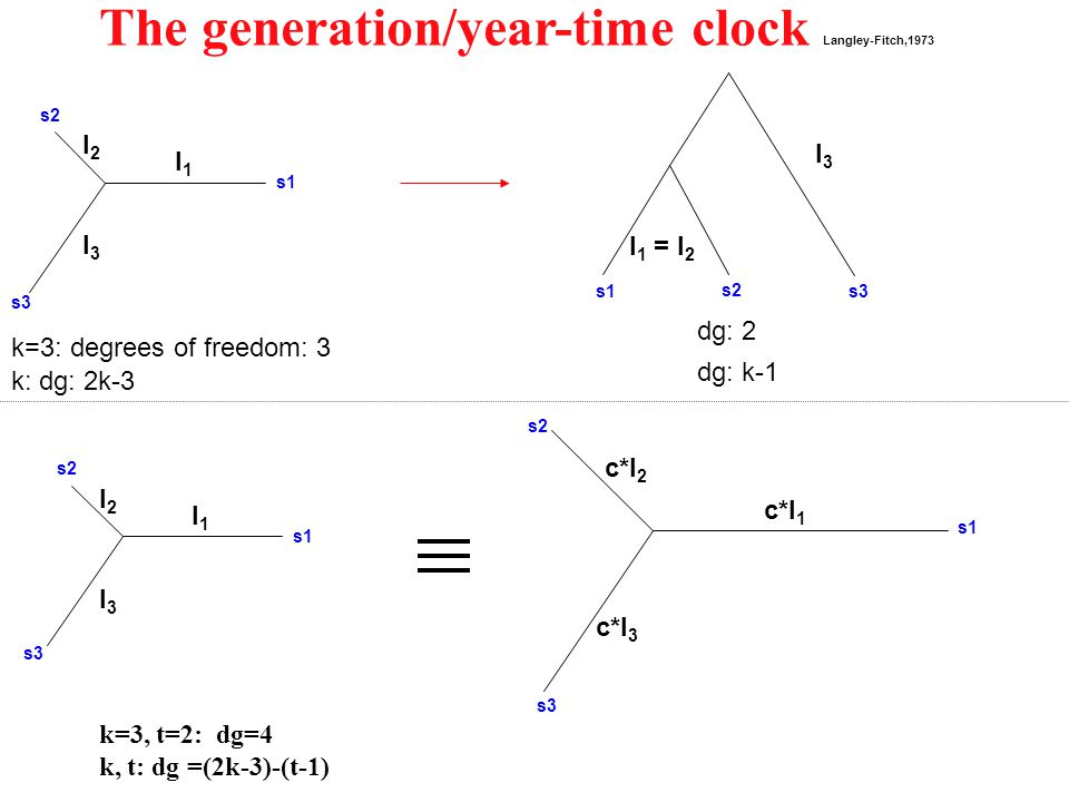 The generation/year-time clock Langley-Fitch,1973