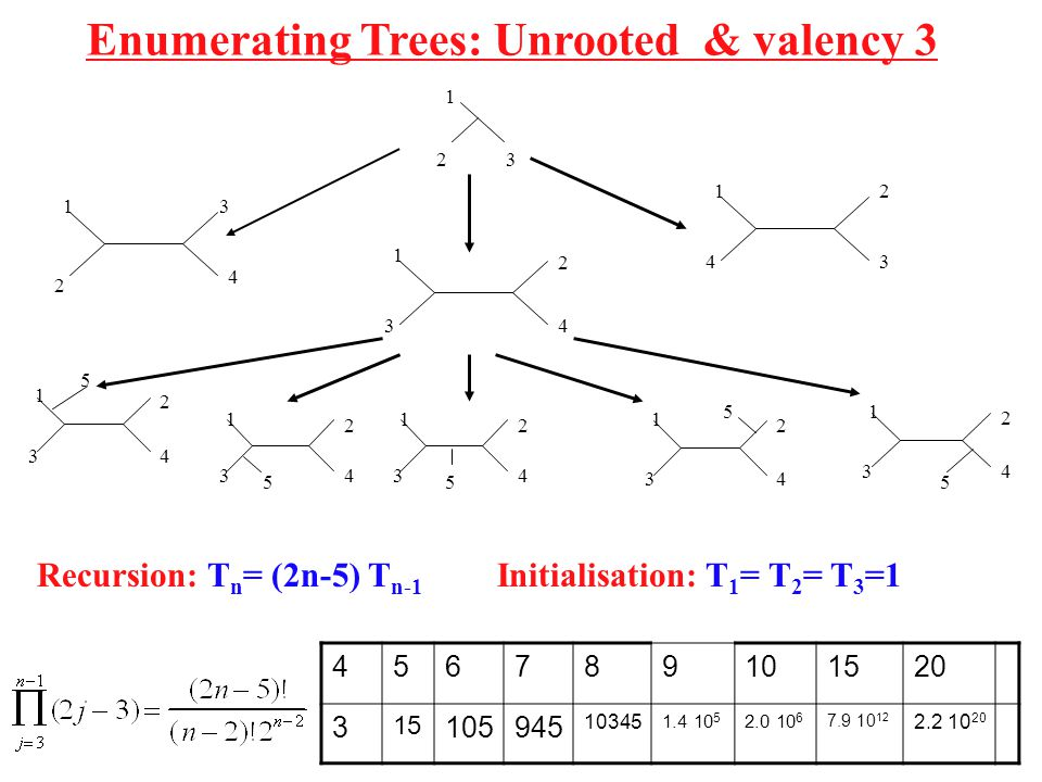 Enumerating Trees: Unrooted & valency 3
