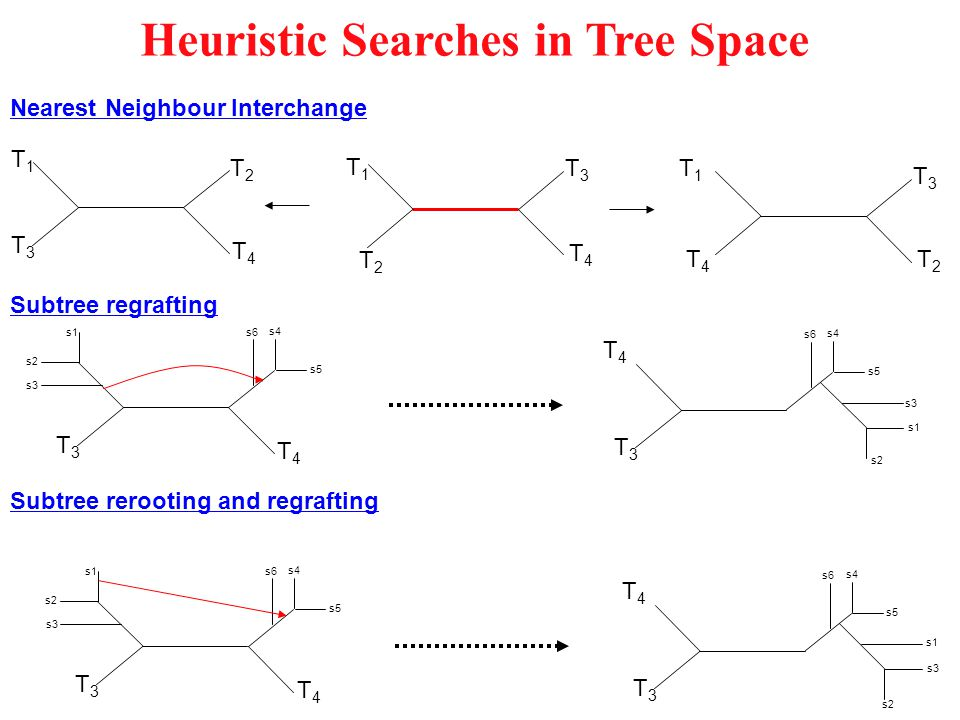 Heuristic Searches in Tree Space