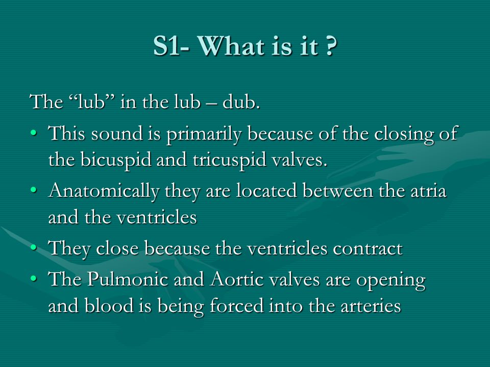 S1- What is it The lub in the lub – dub.