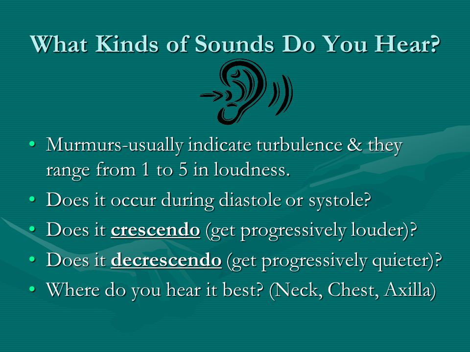 What Kinds of Sounds Do You Hear
