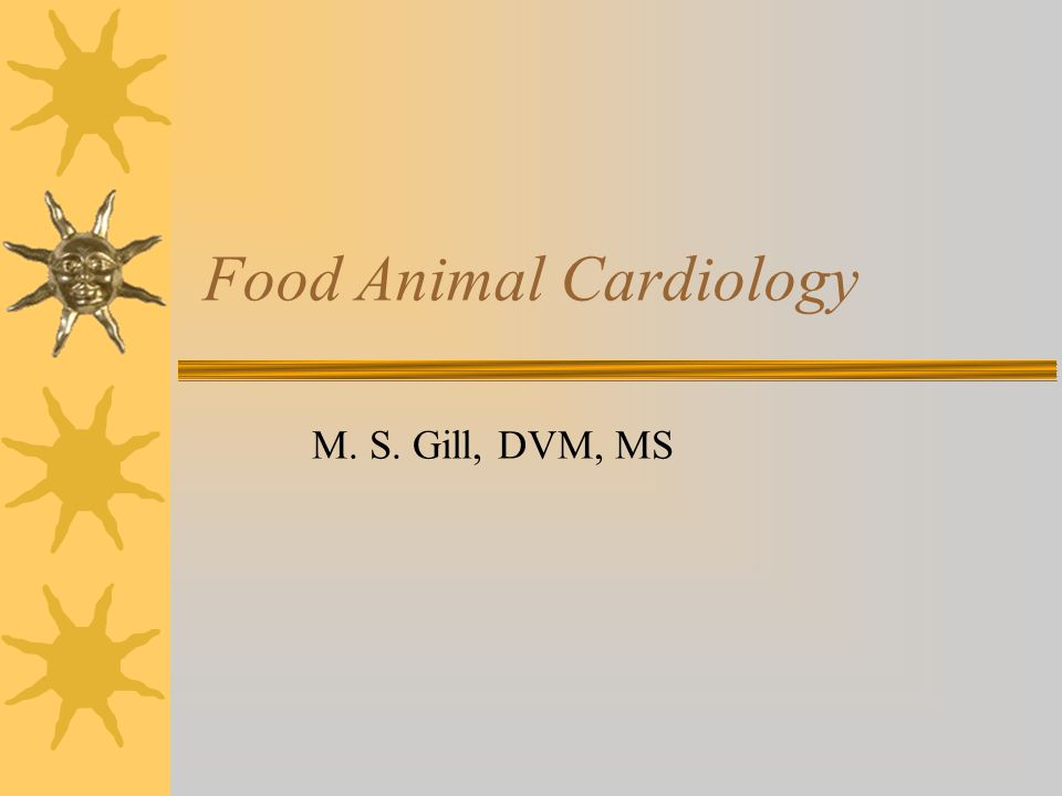 Food Animal Cardiology