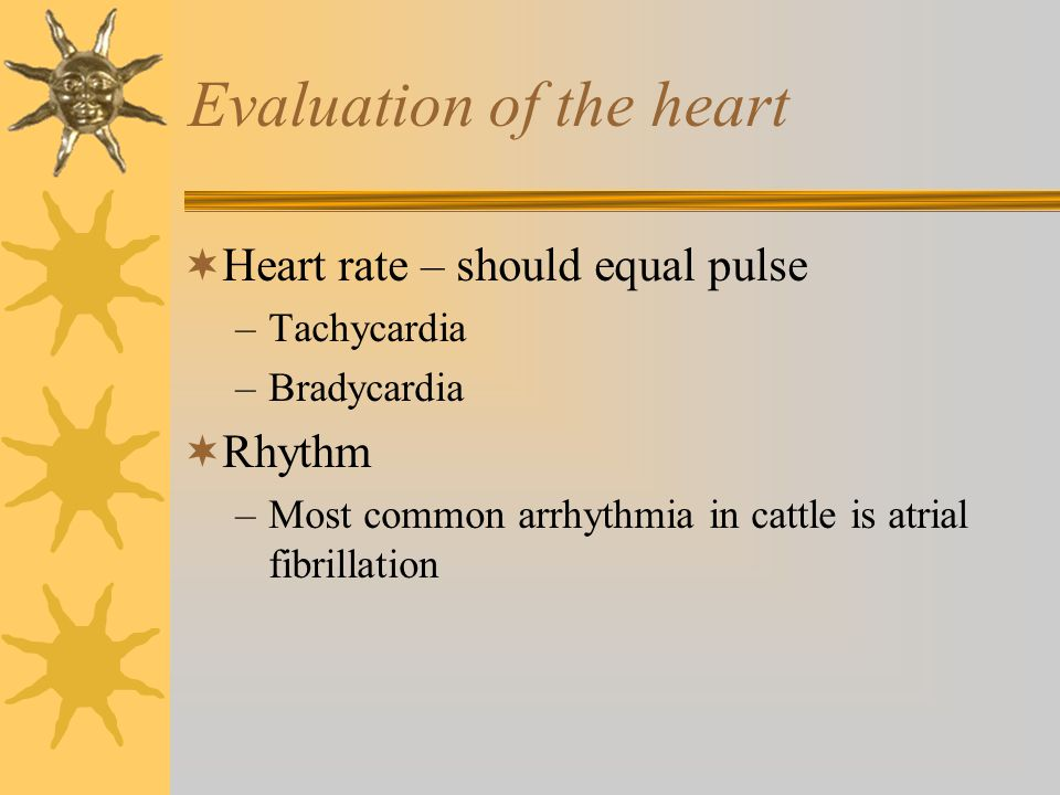 Evaluation of the heart
