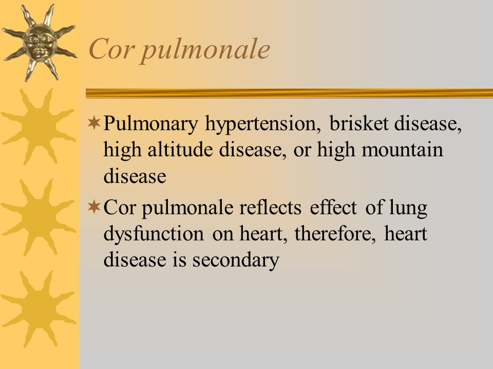 Cor pulmonale Pulmonary hypertension, brisket disease, high altitude disease, or high mountain disease.