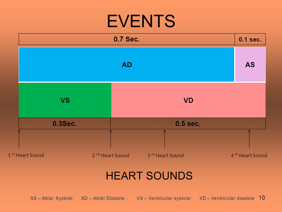 EVENTS HEART SOUNDS 0.7 Sec. AD AS VS VD 0.3Sec. 0.5 sec. 0.1 sec.