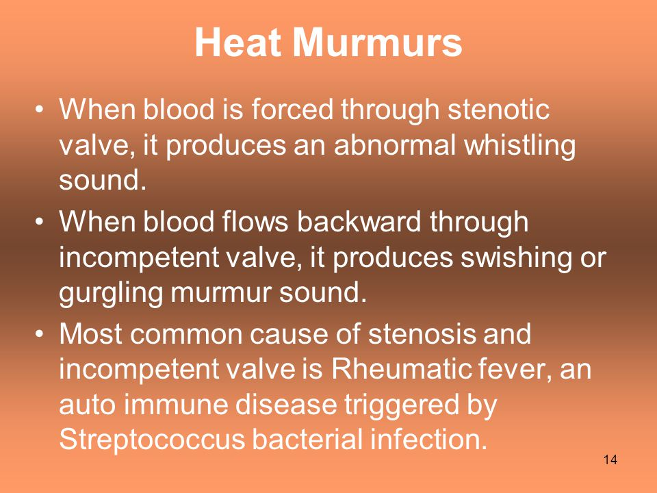 Heat Murmurs When blood is forced through stenotic valve, it produces an abnormal whistling sound.