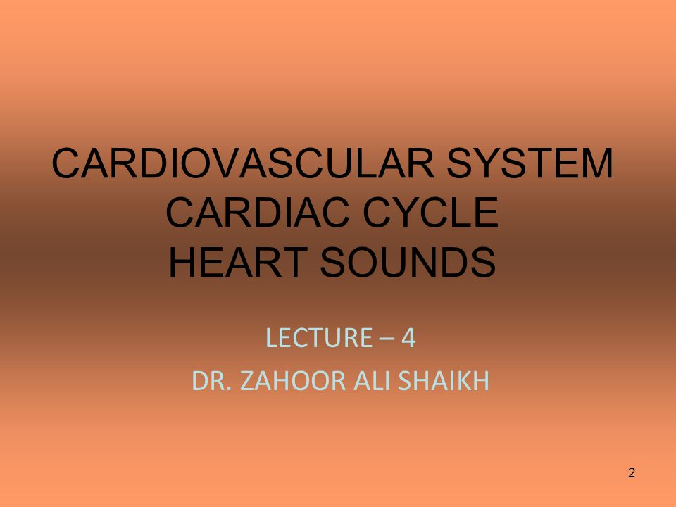 CARDIOVASCULAR SYSTEM CARDIAC CYCLE HEART SOUNDS