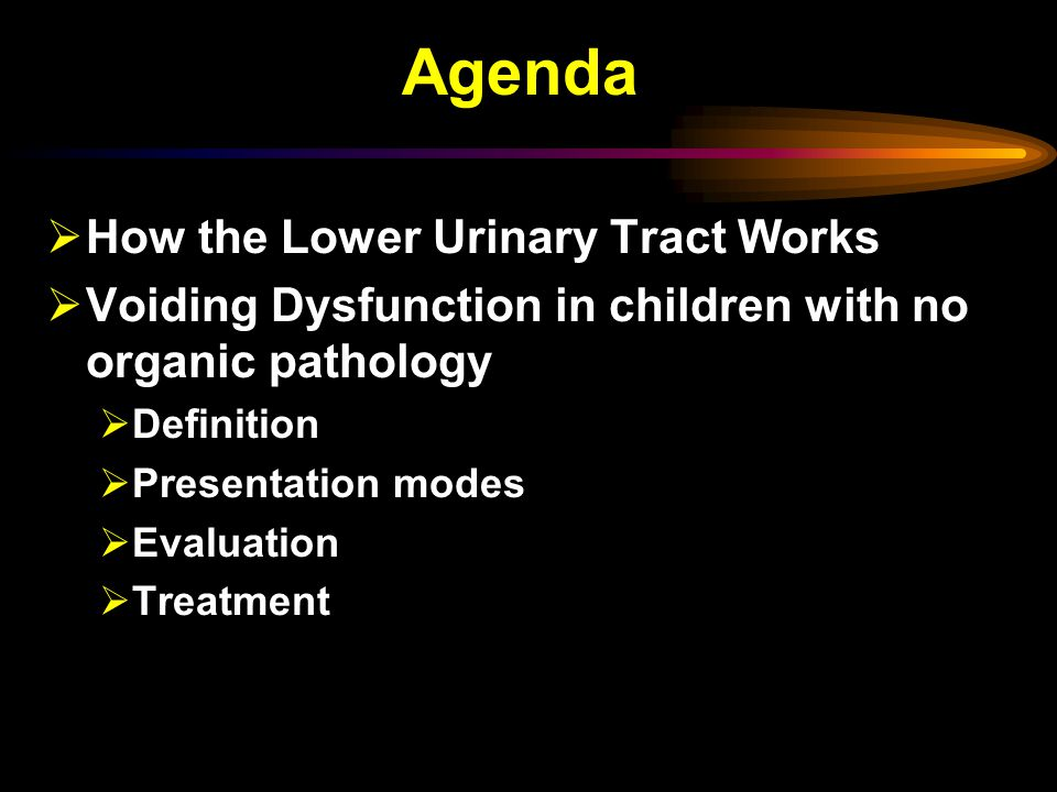 Agenda How the Lower Urinary Tract Works