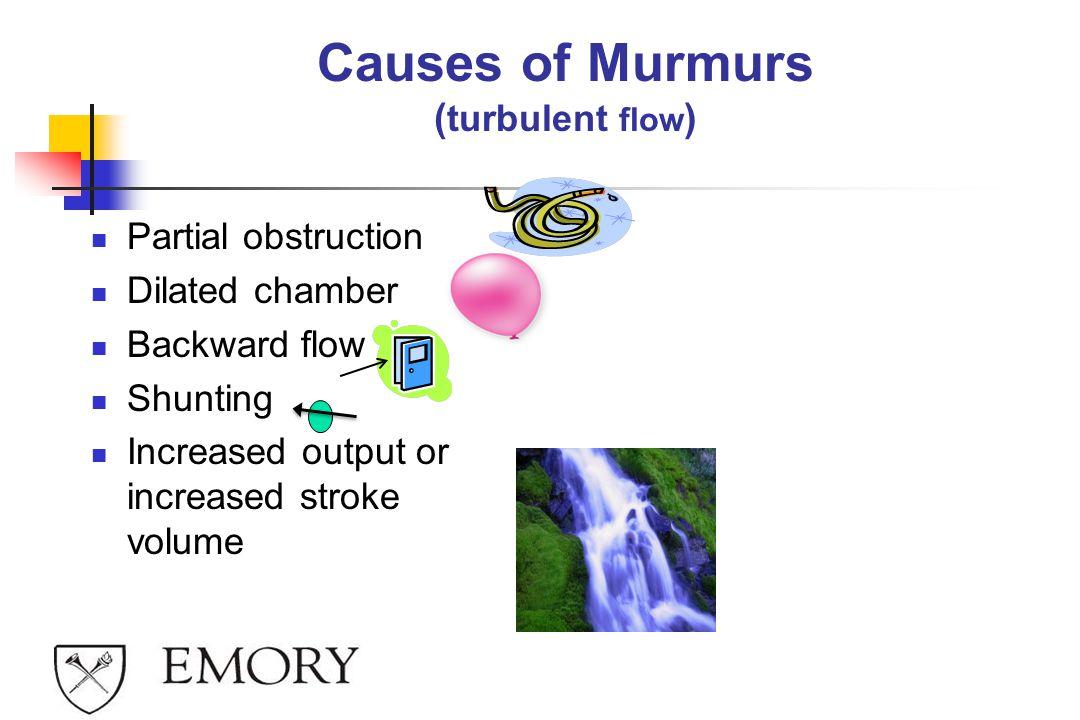 Causes of Murmurs (turbulent flow)