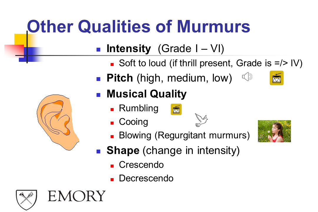 Other Qualities of Murmurs