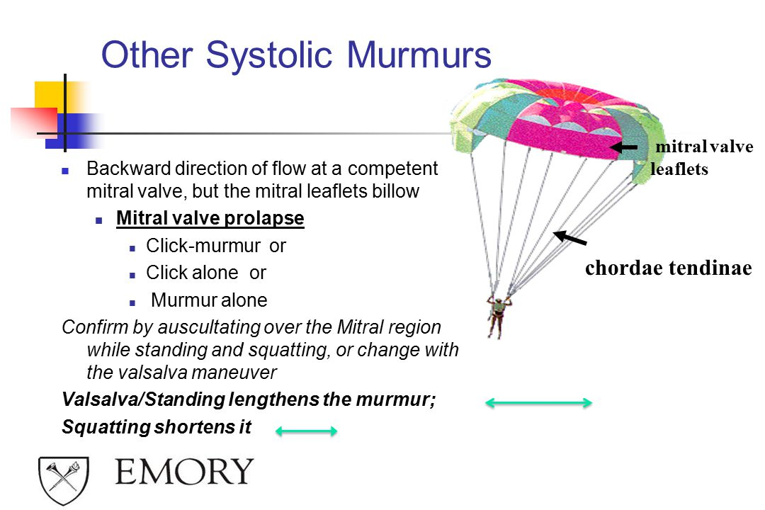 Other Systolic Murmurs