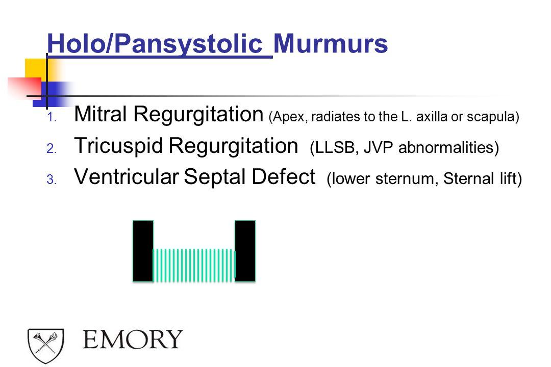 Holo/Pansystolic Murmurs