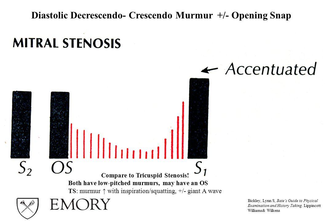 Compare to Tricuspid Stenosis!