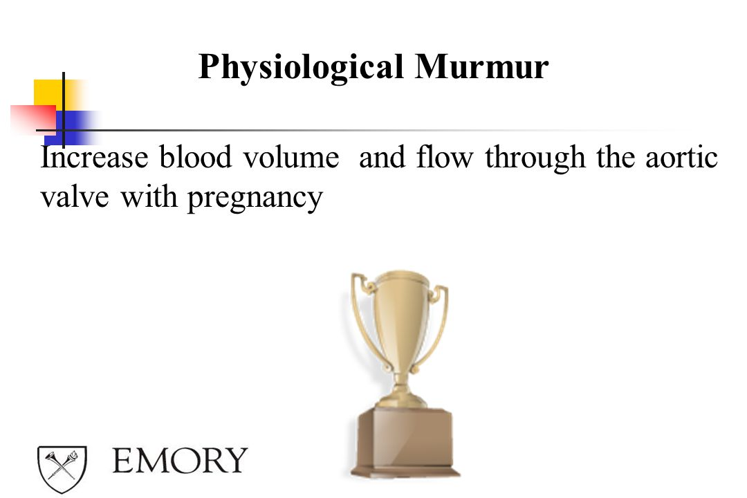 Physiological Murmur Increase blood volume and flow through the aortic valve with pregnancy