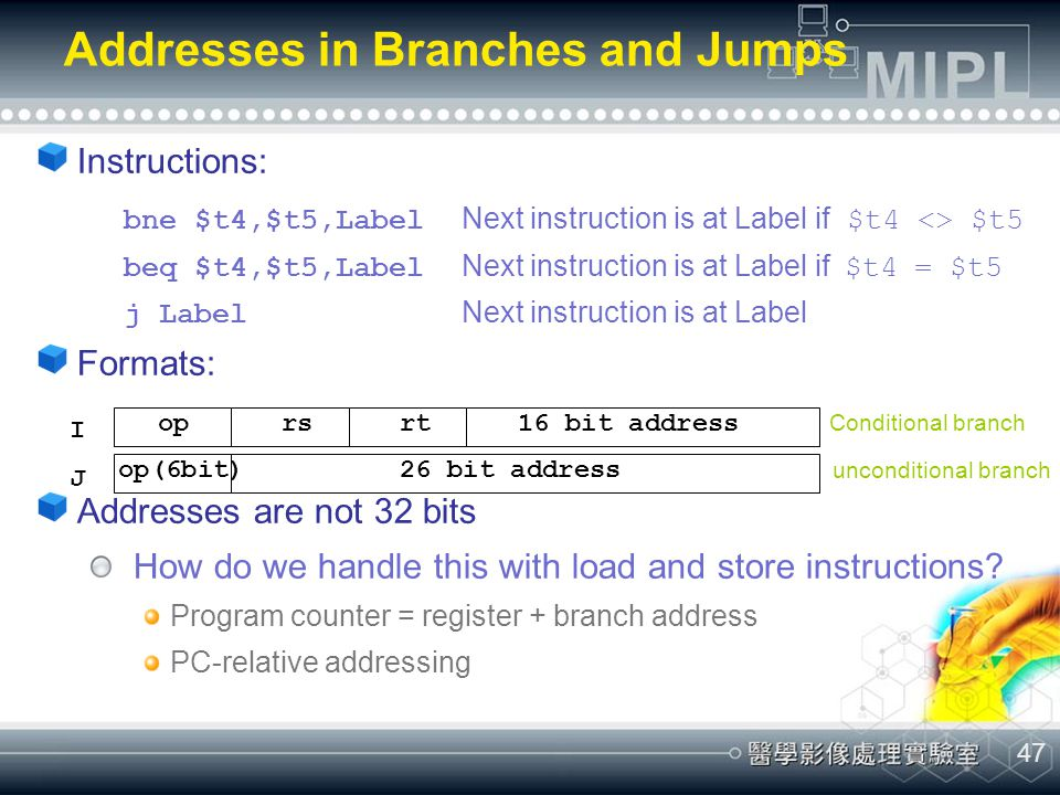 Addresses in Branches and Jumps