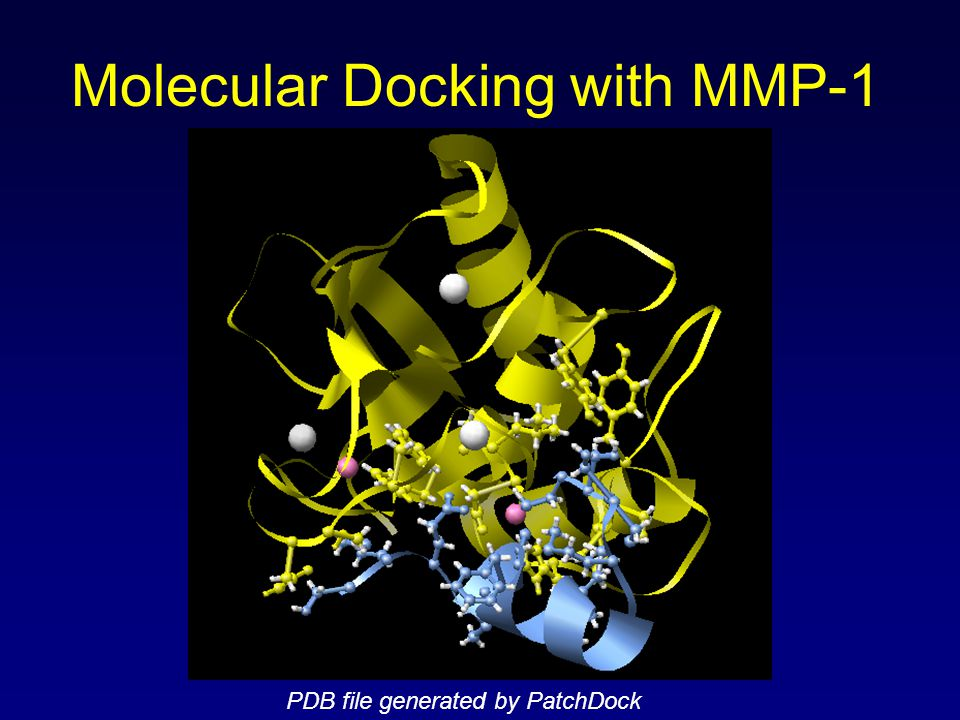Molecular Docking with MMP-1