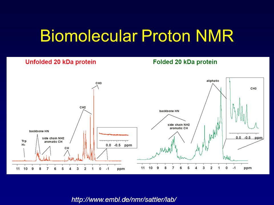 Biomolecular Proton NMR