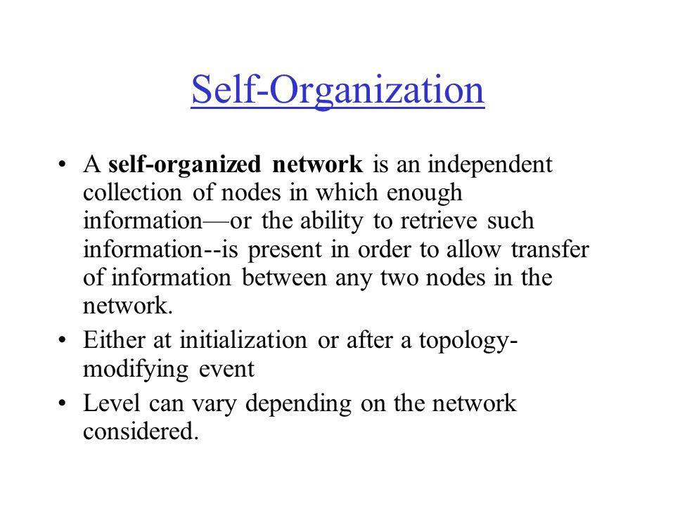 Self-Organization