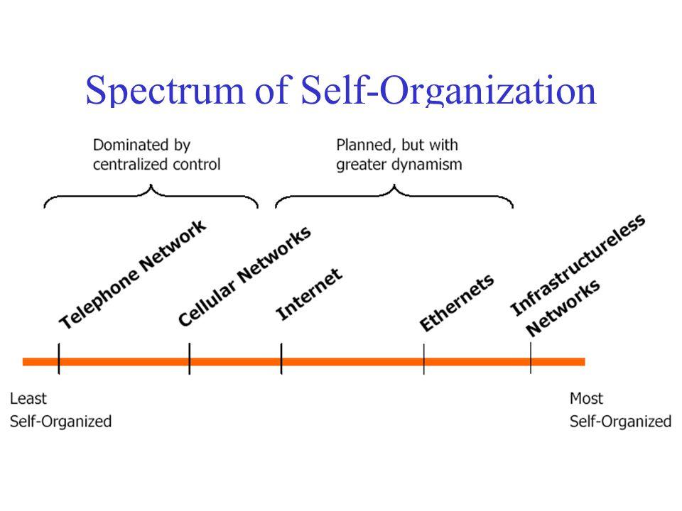Spectrum of Self-Organization
