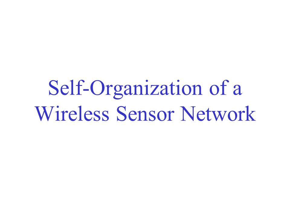 Self-Organization of a Wireless Sensor Network