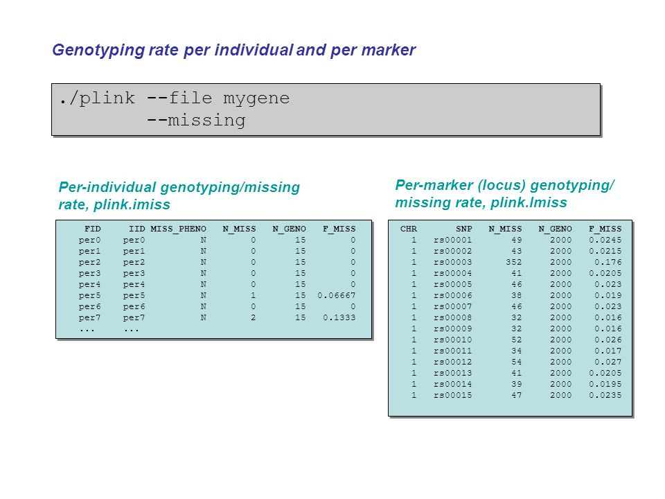 ./plink --file mygene --missing