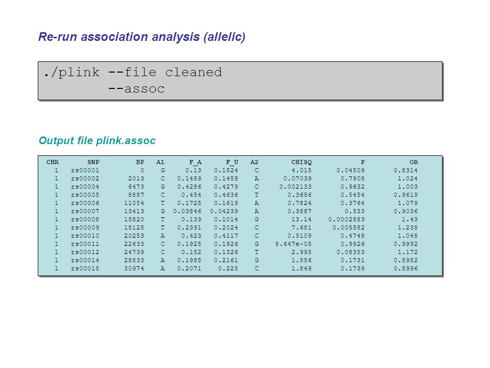 ./plink --file cleaned --assoc Re-run association analysis (allelic)