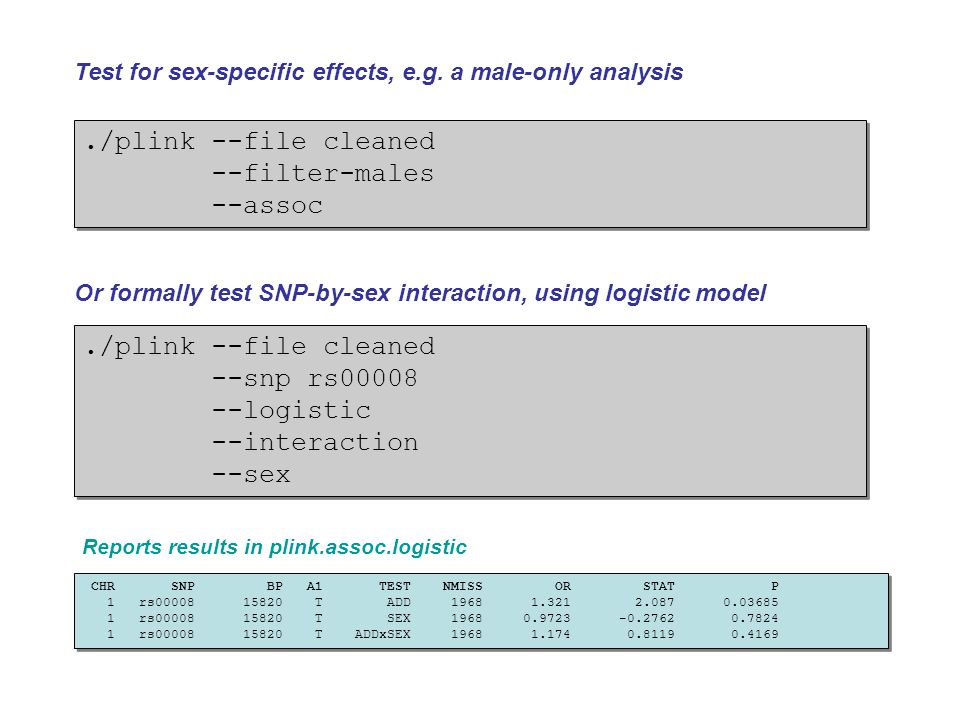 ./plink --file cleaned --filter-males --assoc ./plink --file cleaned