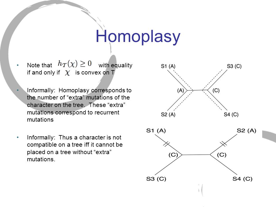 Homoplasy Note that with equality if and only if is convex on T