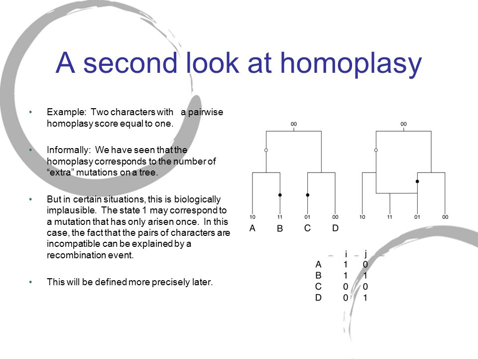 A second look at homoplasy