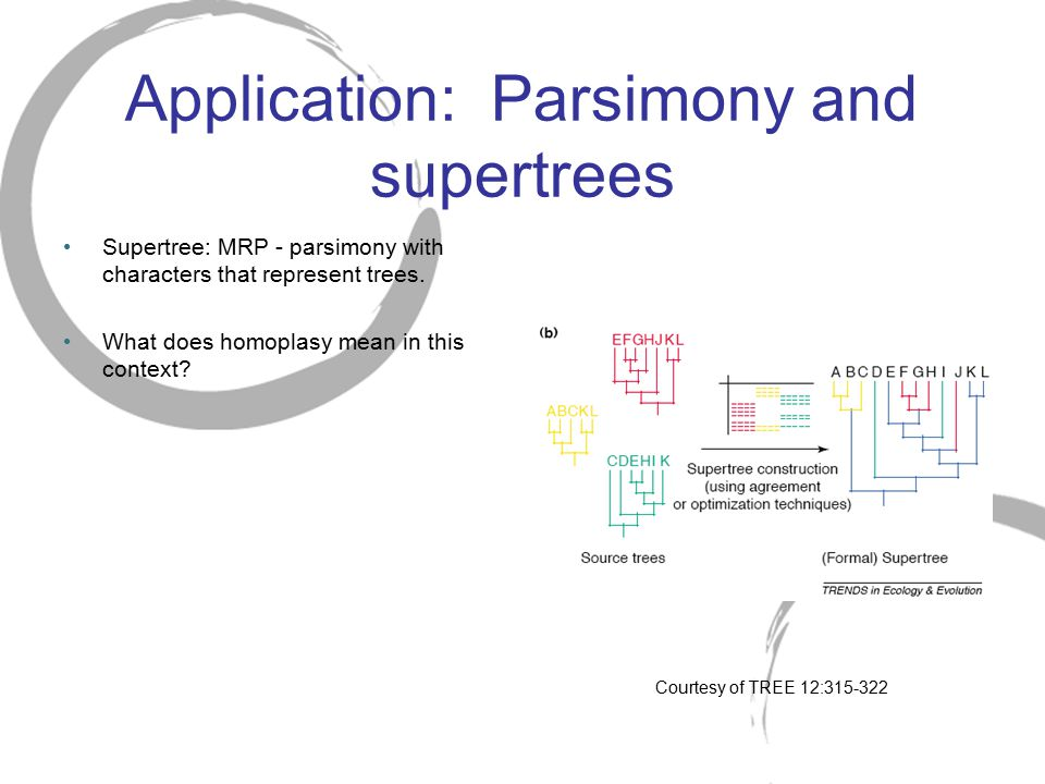 Application: Parsimony and supertrees
