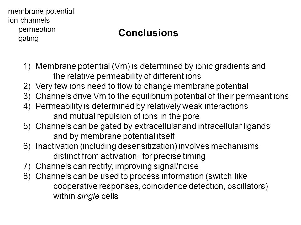 membrane potential ion channels. permeation. gating. Conclusions. 1) Membrane potential (Vm) is determined by ionic gradients and.