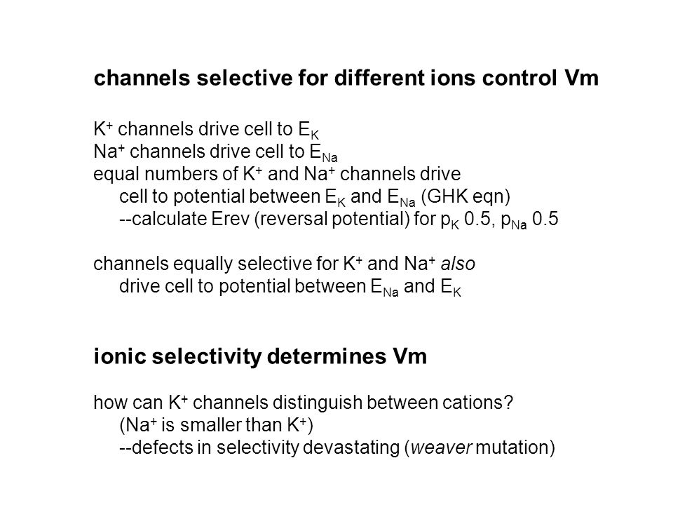 channels selective for different ions control Vm