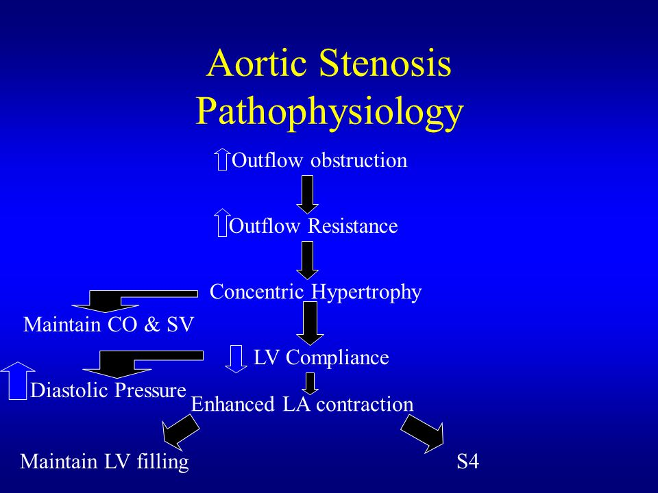 Aortic Stenosis Pathophysiology