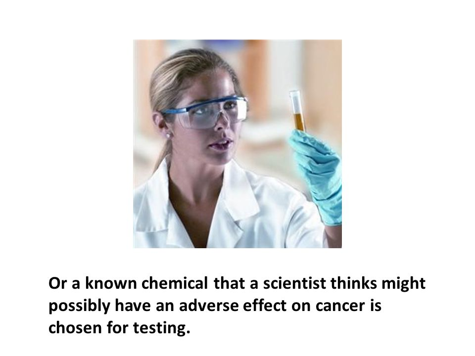 Or a known chemical that a scientist thinks might possibly have an adverse effect on cancer is chosen for testing.