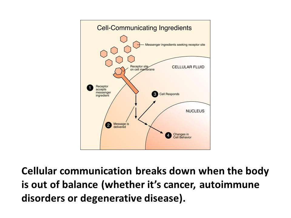 Cellular communication breaks down when the body is out of balance (whether it's cancer, autoimmune disorders or degenerative disease). The immune system also communicates cell-to-cell. The cells identify an invader and order the immune system to turn on to create what is necessary to destroy the enemy.