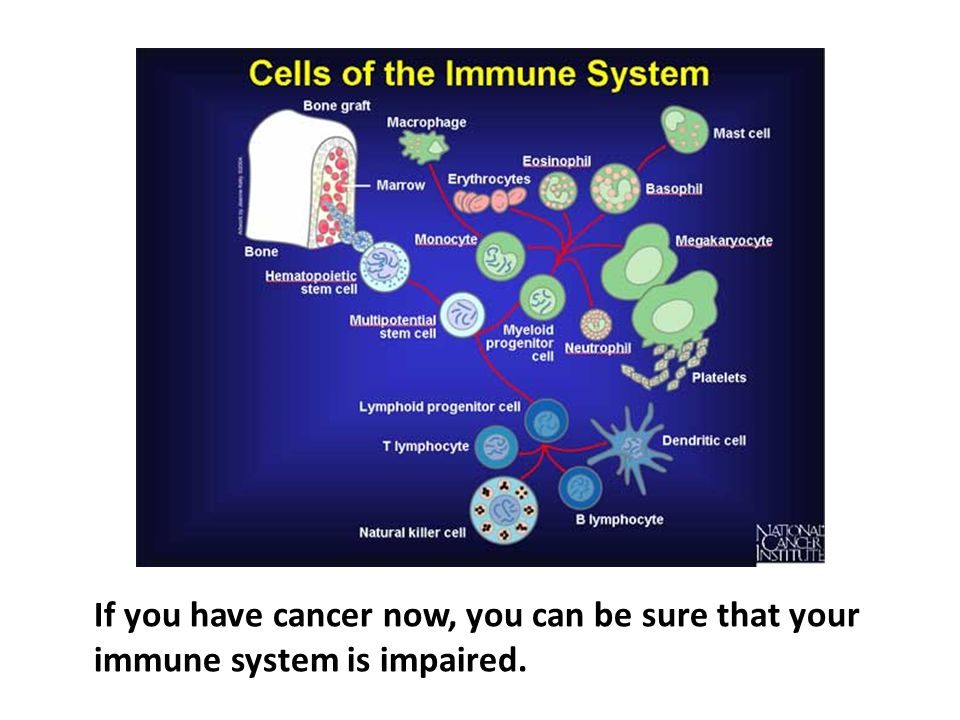 If you have cancer now, you can be sure that your immune system is impaired.