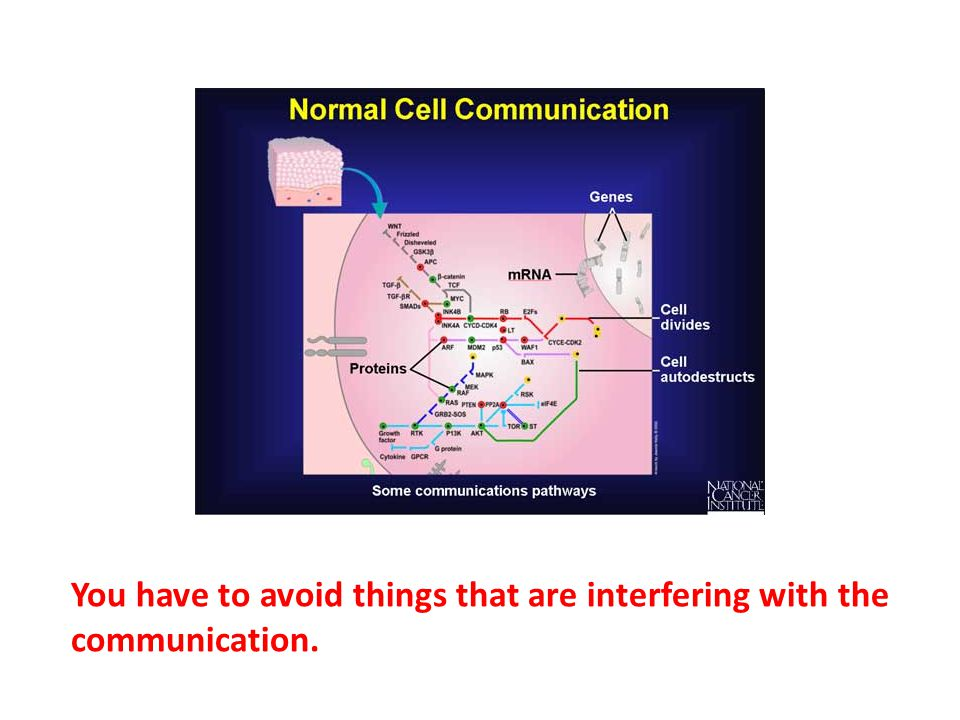 You have to avoid things that are interfering with the communication.
