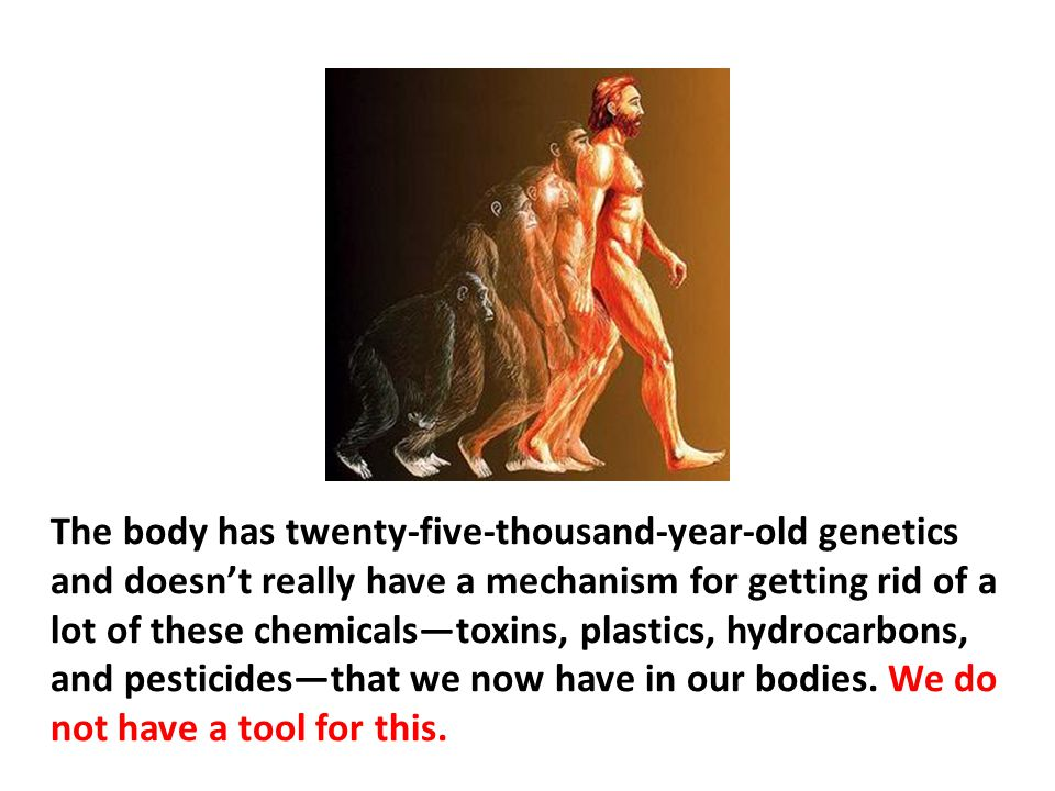 The body has twenty-five-thousand-year-old genetics and doesn't really have a mechanism for getting rid of a lot of these chemicals—toxins, plastics, hydrocarbons, and pesticides—that we now have in our bodies. We do not have a tool for this.