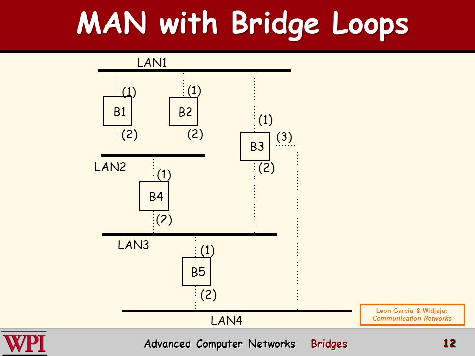 MAN with Bridge Loops LAN1 (1) B1 B2 (1) (2) (2) (3) B3 LAN2 (2) (1)