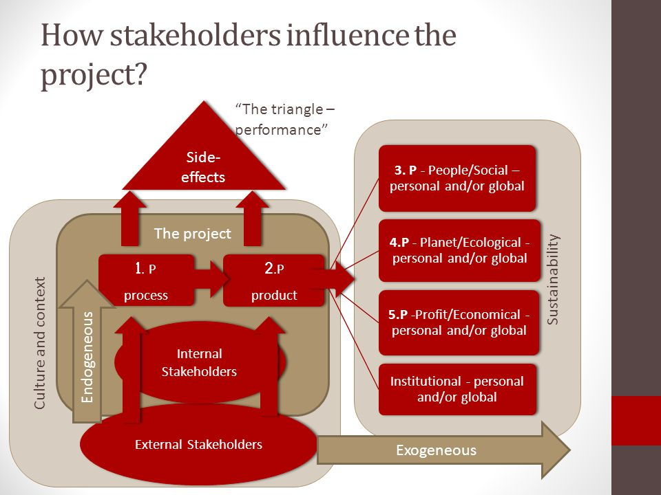 How stakeholders influence the project