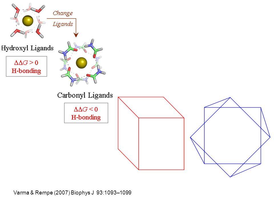 Varma & Rempe (2007) Biophys J 93:1093–1099