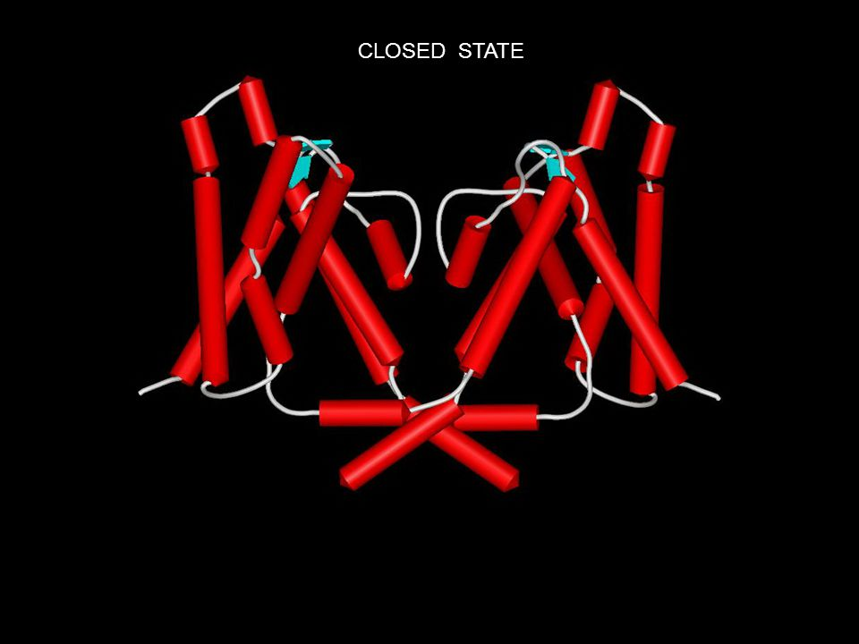 CLOSED STATE